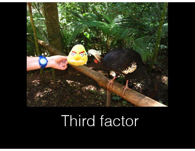 Third factor